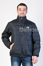 Куртка North Face 25741