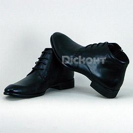 Ботинки Ambruchi 47602